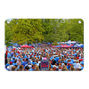 Ole Miss Rebels - Swarm the Grove at Ole Miss#Metal