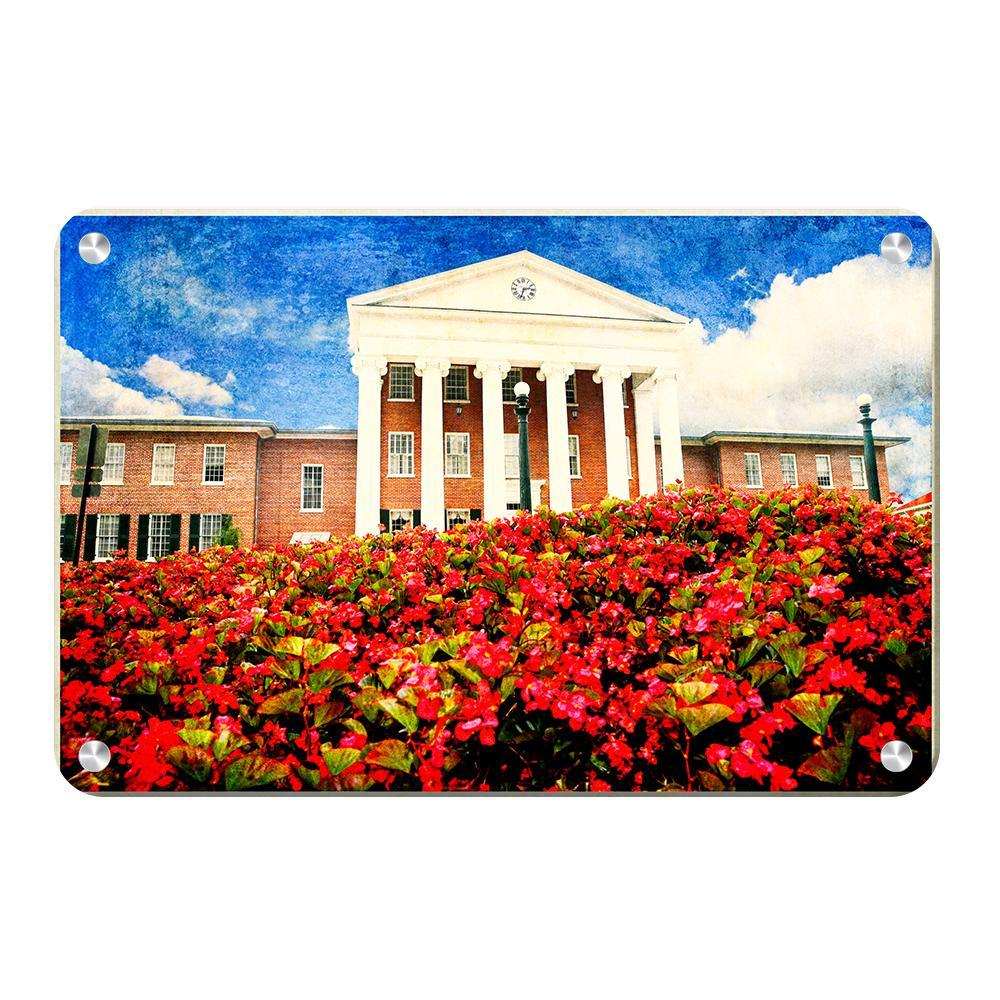Ole Miss Rebels - Lyceum Paint - College Wall Art #Canvas