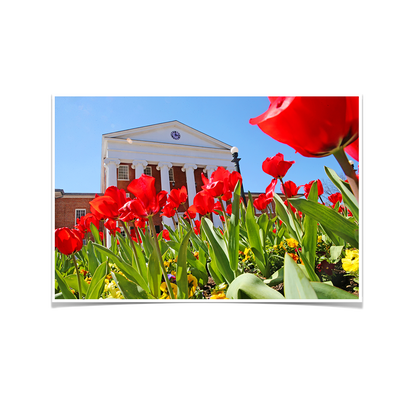 Ole Miss Rebels - Spring Lyceum - College Wall Art #Poster