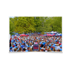 Ole Miss Rebels - Swarm the Grove at Ole Miss - College Wall Art #Poster