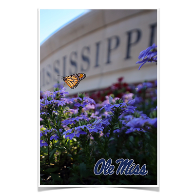 Ole Miss Rebels - Ole Miss Blue - College Wall Art #Poster
