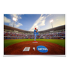 Ole Miss Rebels - NCAA Baseball 2019 - College Wall Art #Poster