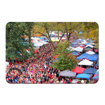 Ole Miss Rebels - Aerial Grove - College Wall Art #PVC