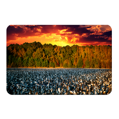 Cotton Field -College Wall Art #PVC