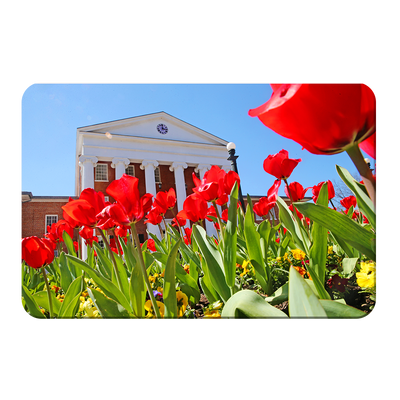 Ole Miss Rebels - Spring Lyceum - College Wall Art #PVC