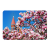 Ole Miss Rebels - Cherry Blossom Ventress - College Wall Art #PVC