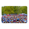 Ole Miss Rebels - Swarm the Grove at Ole Miss - College Wall Art #PVC