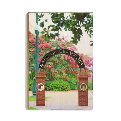 Ole Miss Rebels - Spring Walk of Champions - College Wall Art #Wood