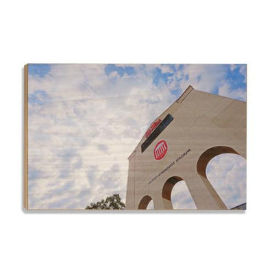 Ole Miss Rebels - University of Mississippi VHS - College Wall Art #Wood