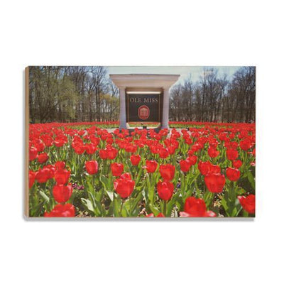Ole Miss Rebels - Spring Flowers - College Wall Art #Wood