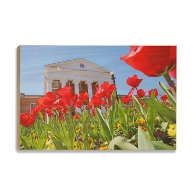 Ole Miss Rebels - Spring Lyceum - College Wall Art #Wood