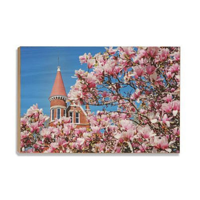 Ole Miss Rebels - Cherry Blossom Ventress - College Wall Art #Wood