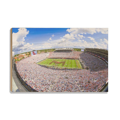 Ole Miss Rebels - Ole Miss White Out - College Wall Art #Wood