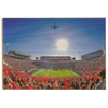 Ole Miss Rebels - Flight Over - College Wall Art #Wood