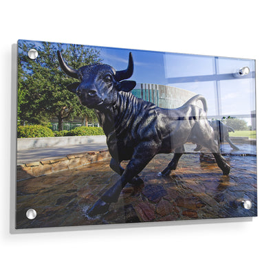 USF Bulls -Mashal Student Center - College Wall Art #Acrylic