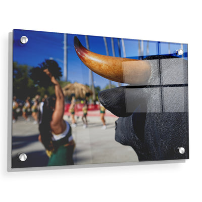 USF Bulls - Bulls Watch - College Wall Art #Acrylic