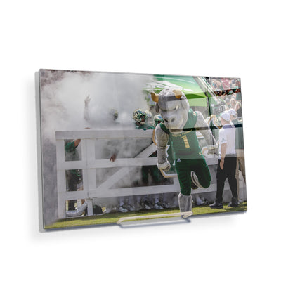 USF Bulls -Bulls Stampeed - College Wall Art #Acrylic Mini