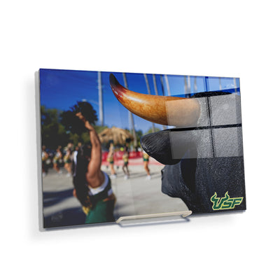 USF Bulls - Bulls Watch - College Wall Art #Acrylic Mini
