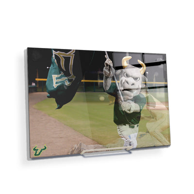 USF Bulls - Bulls Baseball - College Wall Art #Acrylic Mini