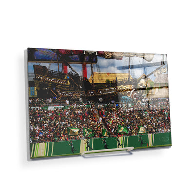 USF Bulls - Bulls in RayJay - College Wall Art #Acrylic Mini