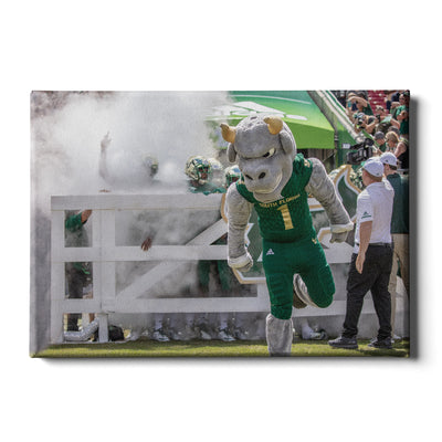 USF Bulls -Bulls Stampeed - College Wall Art #Canvas