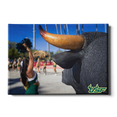 USF Bulls - Bulls Watch - College Wall Art #Canvas