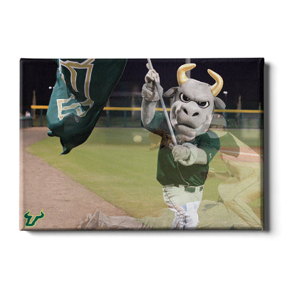 USF Bulls - Bulls Baseball - College Wall Art #Canvas