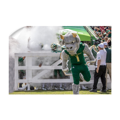 USF Bulls -Bulls Stampeed - College Wall Art #Wall Decal