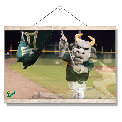 USF Bulls - Bulls Baseball - College Wall Art #Hanging Canvas