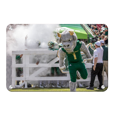 USF Bulls -Bulls Stampeed - College Wall Art #Metal