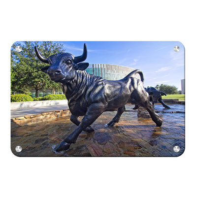 USF Bulls -Mashal Student Center - College Wall Art #Metal