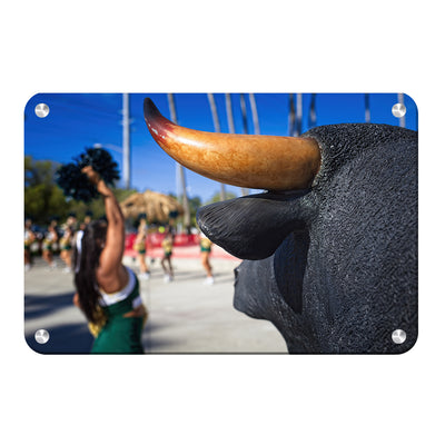 USF Bulls - Bulls Watch - College Wall Art #Metal