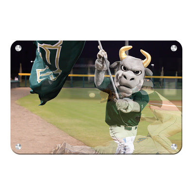 USF Bulls - Bulls Baseball - College Wall Art #Metal