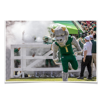 USF Bulls -Bulls Stampeed - College Wall Art #Poster