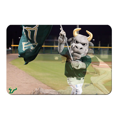 USF Bulls - Bulls Baseball - College Wall Art #PVC