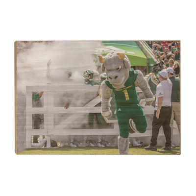 USF Bulls -Bulls Stampeed - College Wall Art #Wood