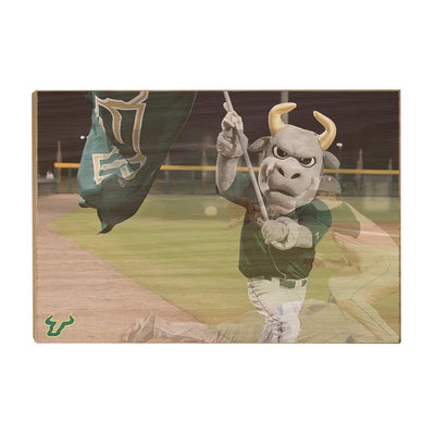 USF Bulls - Bulls Baseball - College Wall Art #Wood