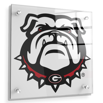 Georgia Bulldogs - Bulldogs - College Wall Art #Acrylic