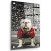 Georgia Bulldogs - Uga Under the Lights - College Wall Art #Acrylic