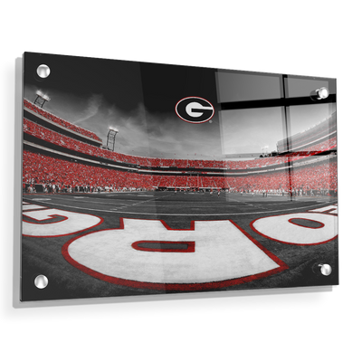 Georgia Bulldogs - Sanford Stadium End Zone Duotone - College Wall Art #Acrylic
