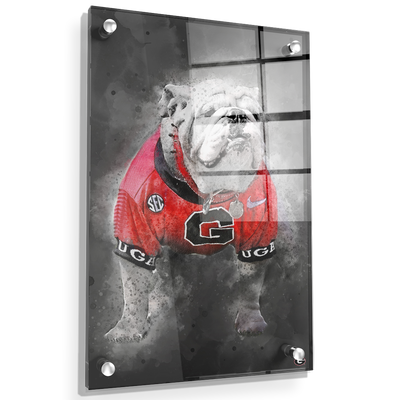 Georgia Bulldogs - The Dawg Painting - College Wall Art #Acrylic