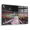 Georgia Bulldogs - Dawg Entrance - College Wall Art#Acrylic