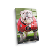 Georgia Bulldogs - Uga Poised II - College Wall Art #Acrylic Mini