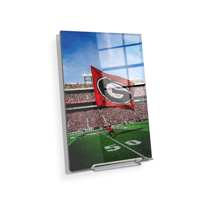 Georgia Bulldogs - The G Flag - College Wall Art #Acrylic Mini
