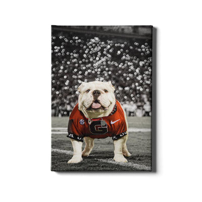 Georgia Bulldogs - Uga Under the Lights - College Wall Art #Canvas