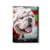 Georgia Bulldogs - Uga Portrait - College Wall Art #Canvas