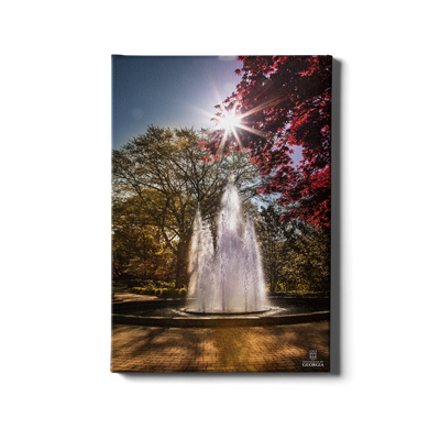 Georgia Bulldogs - The Fountain - College Wall Art #Canvas