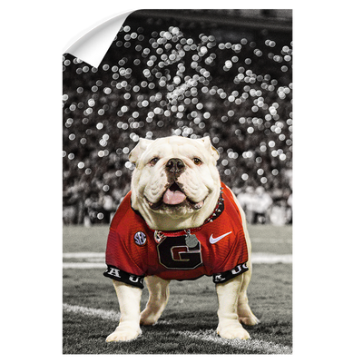 Georgia Bulldogs - Uga Under the Lights - College Wall Art #Wall Decal