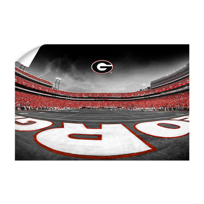 Georgia Bulldogs - Sanford Stadium End Zone Duotone - College Wall Art #Wall Decal