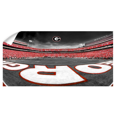 Georgia Bulldogs - Sanford Stadium End Zone Duotone Panoramic - College Wall Art #Wall Decal